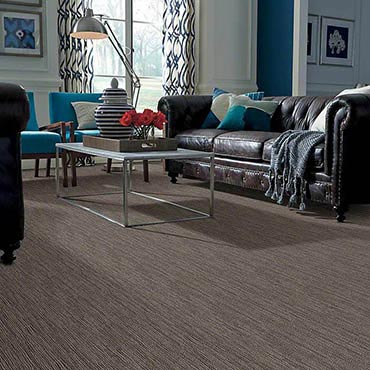 Anso® Nylon Carpet | Lakeland, FL